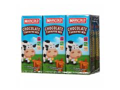 Marigold Chocolate Flavoured Milk